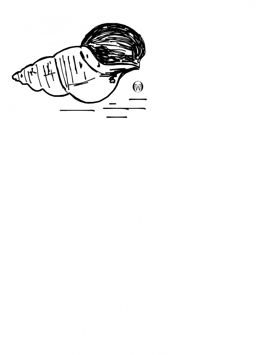 junker & warnke image 3